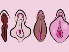 Did you know? Color of the labia determines sex life!